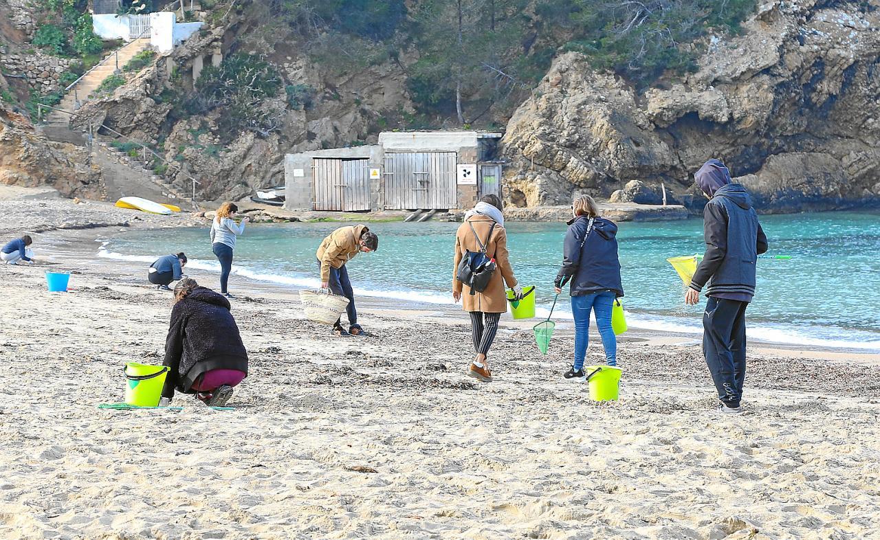 Los voluntarios recogieron más basura ayer en Cala Vedella que hace unas  semanas en la playa f2141253e689